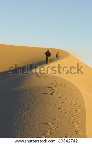 Family rises up along the crest of a sand dune