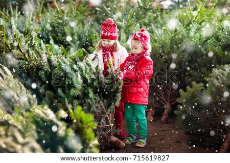 Family selecting Christmas tree. Kids choosing freshly cut Norway Xmas tree at outdoor lot. Children buying gifts at winter fair. Boy and girl shopping for Christmas decoration at market. Holiday time #715619827