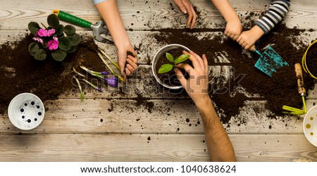 Family sits flowers in a pot. Spring and hobbies, family grows flowers together. Beauty and nature. Hobby home for whole family, entertainment with children, development and education. Flower ground  #1040638624