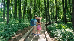 Family tourism concept. Children follow an organized hiking trail in a national park. The boy shows something interesting with surprise and delight. Ecotourism and environmental protection concept.