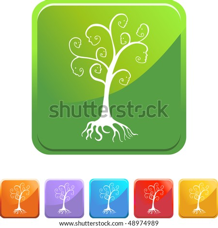 Family Tree web button isolated on a background.