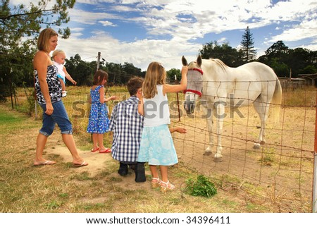 Family visiting and feeding an injured horse on a farm