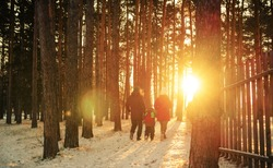 family walking in the winter forest park at sunset