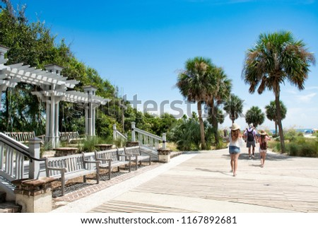 Family walking to the beach on summer vacation. People enjoying summer vacation by the ocean. Palm trees on the pathway leading to ocean. Coligny Beach Park, Hilton Head Island, South Carolina, USA #1167892681