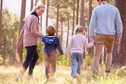 Family walking towards a forest, back view
