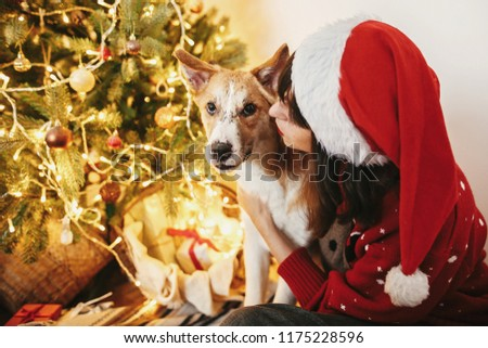 family warm atmospheric moments in  winter  holidays. happy girl in santa hat hugging with cute dog on background of golden beautiful christmas tree with lights in festive room.