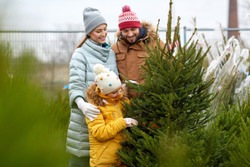 family, winter holidays and people concept - happy mother, father and little daughter choosing christmas tree at street market