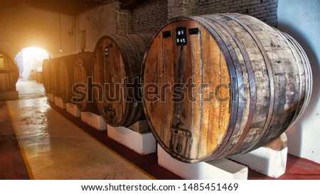 Famous El Cafayate wineries and wine tours in North Argentina #1485451469