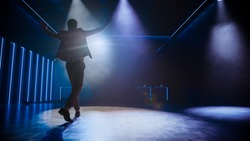Famous Entertainer Gets on the Stage, Greets Audience, Starts Performance. Software Company Founder, Tech Marketing Guru Making a Pitch, Presentation Speaker Giving Talk. Cinematographic Back View