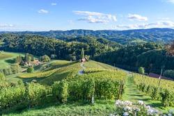 Famous Heart shaped wine road in Slovenia in autumn, Heart form - Herzerl Strasse, vineyards in autumn, Spicnik