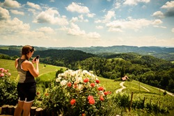 Famous Heart shaped wine road in Slovenia in summer, woman with a mobile phone photographing heart. Heart form - Herzerl Strasse, vineyards in summer, Spicnik