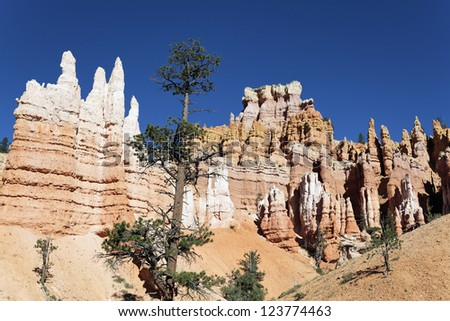 famous Navajo Trail in Bryce Canyon, Utah, USA