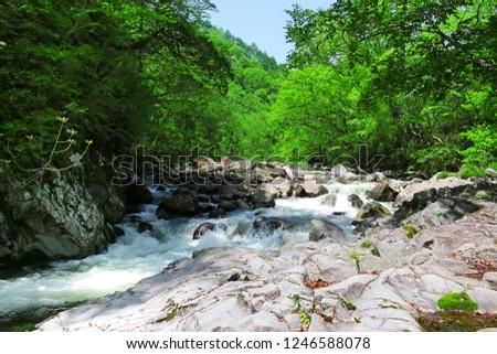 Famous ravine \