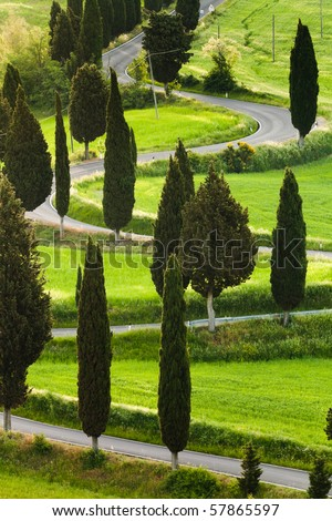 Famous road near small city Monticchiello, Tuscany, Italy