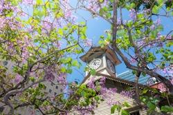 Famous sightseeing spots in Sapporo, Clock Tower  / Sapporo City Hokkaido, Japan