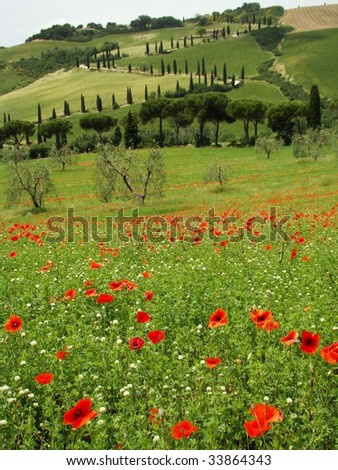 famous tuscan scenery, La Foce in The Val d Orcia, UNESCO World Heritage site, Italy