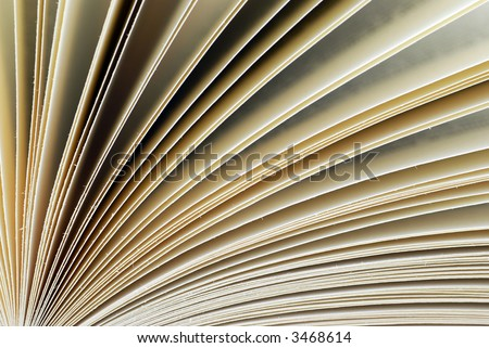 fan of book pages