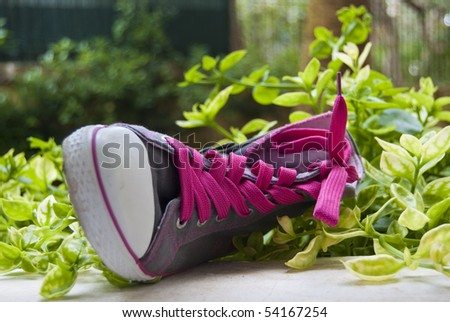 Fancy sneaker with the pink laces lies in green grass