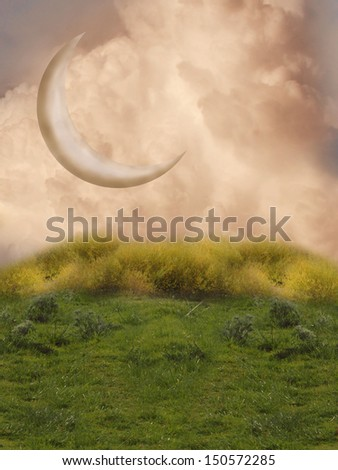 fantansy landscape with big moon and grass