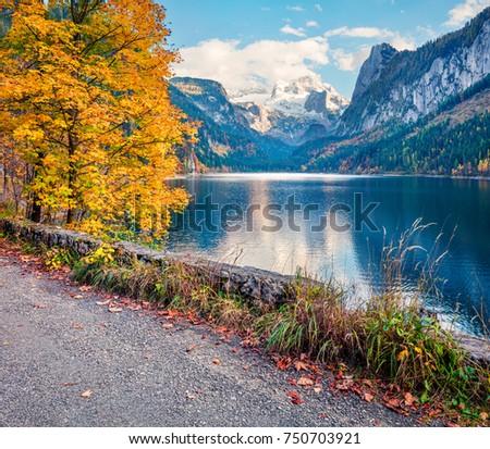Fantastic autumn scene of Vorderer