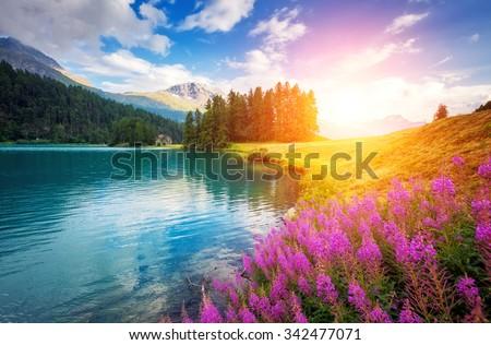 Stock Photo Fantastic azure alpine lake Champfer. Unusual and picturesque scene. Location famous resort Silvaplana village, district of Maloja in the Swiss canton of Graubunden, Alps. Europe. Beauty world.