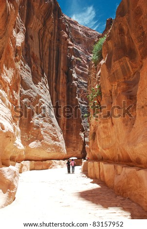 Fantastic beauty of the Siq gorge in Petra, Jordan