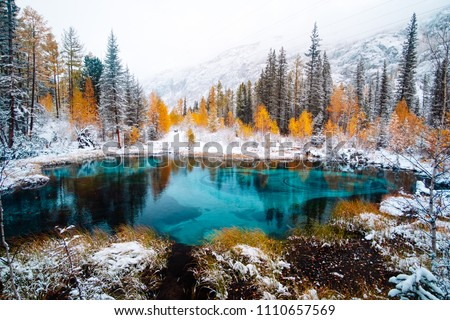 Fantastic blue geyser lake in the autumn forest. Altai, Russia