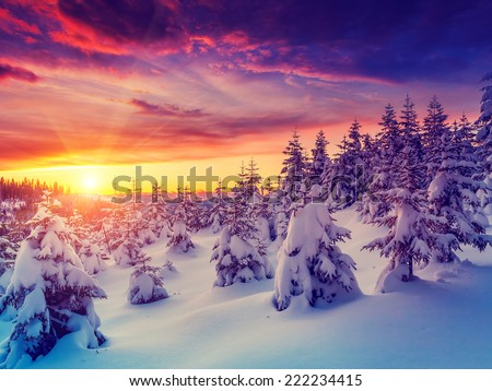 stock photo fantastic evening landscape glowing by sunlight dramatic wintry scene natural park carpathian 222234415 - Каталог — Фотообои «Природа, пейзаж»
