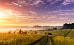 Fantastic foggy sunny day. ground road in the rural field with fresh grass in the sunlight. majestic misty sunrise with colorful clouds on the sky, Dramatic picturesque scene. Warm sundown over meadow