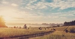 Fantastic foggy sunset. ground road in the rural field with fresh grass in the sunlight. majestic misty sunrise with colorful clouds on the sky, Dramatic picturesque scene. vintage creative effect