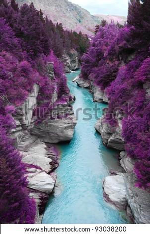 fantastic landscape purple pine ...