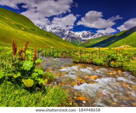 Fantastic landscape with a river in the mountains. Upper Svaneti, Georgia, Europe. Caucasus mountains. #184948658
