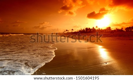 Photo of  Fantastic natural images high quality art 4K