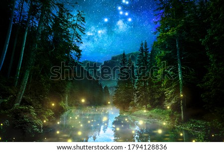 Fantastic night forest night nature abstract