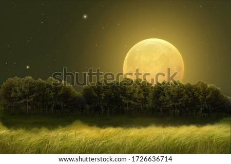 Fantastic night landscape of a field with trees on the horizon illuminated by a large full moon. Photo manipulation. Illustration 3D. Foto d'archivio ©