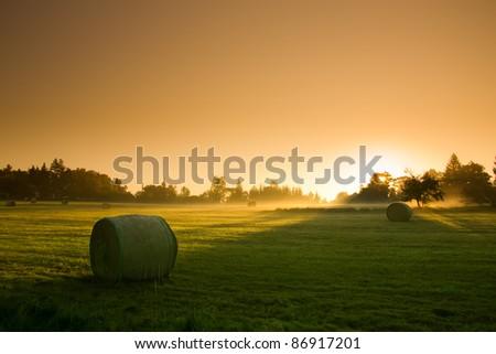 Fantastic Orange Sunrise - autumn meadow