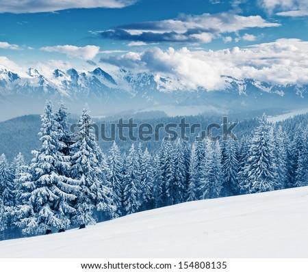 Fantastic sunny day is in mountain landscape. Dramatic overcast sky. Carpathian, Ukraine, Europe. Beauty world.