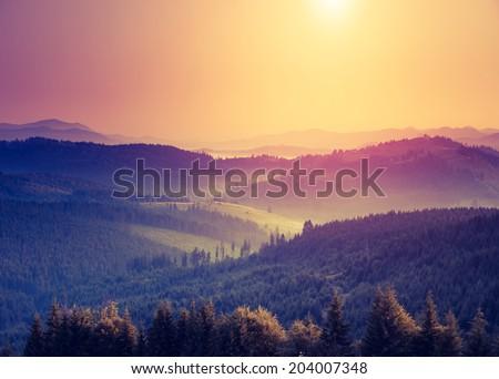fantastic sunny hills under...