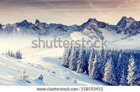 Stock Photo Fantastic winter landscape. Dramatic overcast sky. Creative collage. Beauty world.