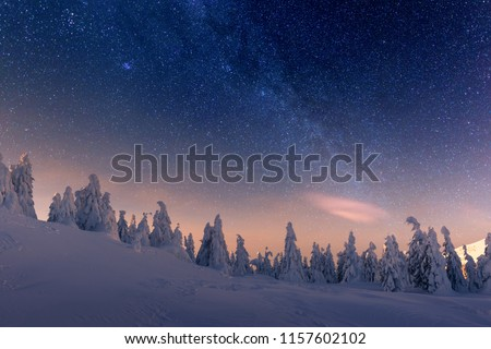 Fantastic winter landscape glowing by star light. Dramatic wintry scene with snowy trees and milky way in night sky. Carpathians, Europe.