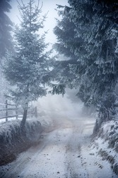 Fantastic winter landscape with snowy road and frozen trees. Christmas holiday and winter vacations concept