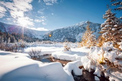Fantastic winter landscape with spruces covered in snow. Frosty day, exotic wintry scene. Carpathian mountains, Ukraine, Europe. Winter nature wallpapers. Splendid christmas scene. Beauty world.