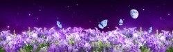 Fantastical fantasy background of magical purple dark night sky with shining stars, moon, bluebells campanula flowers garden and flying blue butterflies. Photo of moon is taken by me with my camera.