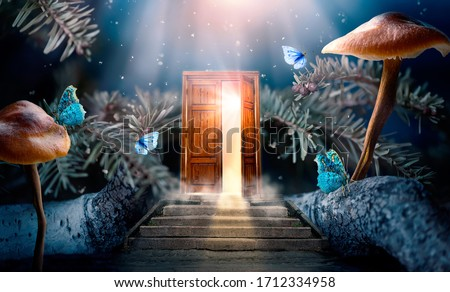 Fantasy enchanted fairy tale forest with magical opening secret wooden door and stairs leading to mystical shine light outside the gate, mushrooms, rays and flying fairytale magic butterflies in woods