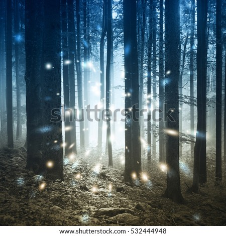 Fantasy firefly lights in the magic fairy tale foggy forest. #532444948