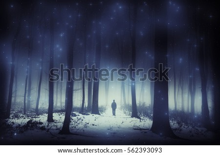 Fantasy forest scenery. Surreal magical atmospheric landscape with man walking in forest with night sky overlay