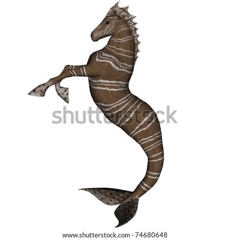 Fantasy Hippocampus
