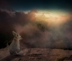 Fantasy image of a fennec fox sitting on a mountain cliff