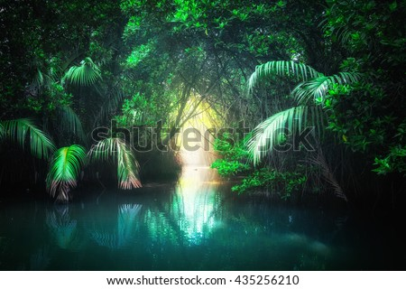 Fantasy jungle landscape of turquoise tropical lake in mangrove rain forest with tunnel and path way through lush. Sri Lanka nature and travel destinations #435256210