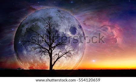 Fantasy landscape - Lonely bare tree silhouette with huge planet rising behind it and galaxy in the sky. Elements of this image are furnished by NASA #554120659